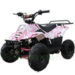 2018 New Arrival! ATV-B01 110cc ATV with Automatic Transmission, Remote Control and Rear Rack!