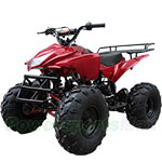 "2018 High Quality! ATV-B05 125cc ATV with Automatic Transmission w/Reverse, Foot Brake, Remote Control! Big 19""/18""Tires!"