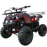 "2018 New Arrival! ATV-B06 125cc ATV with Automatic Transmission w/Reverse, Foot Brake, Remote Control! Big 16"" Tires!"