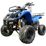 "ATV-F013 110cc Utility ATV with Automatic Transmission w/Reverse! Big 16"" Tires!"