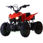 "ATV-F024 60cc Kids ATV with Automatic Transmission, Electric Start! Hydraulic Brakes! 6"" Tires!"