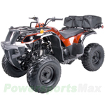 ATV-X11 150cc Utility ATV with Automatic Transmission w/Reverse, Foot Brake, Free Cargo Bag!Free Gifts!