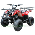 "ATV-J012 125cc Utility ATV with Automatic Transmission w/Reverse, Foot Brake and Remote Control! Big 16"" Tires!Free Gifts!"