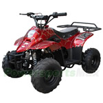 ATV-X08 110cc ATV with Automatic Transmission, Foot Brake, Remote Control and Rear Rack! Free Gifts!