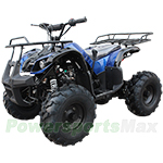 "ATV-X10 125cc Utility ATV with Automatic Transmission w/Reverse, Foot Brake, Remote Control! Big 19"" Tires!Free Gifts!"