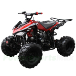 "Coolster ATV-3125C-2 125cc Sports ATV with Semi-Automatic Transmission w/Reverse, Foot Brake, Remote Control! Big 19""/18"" Tires!"