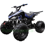 "Coolster ATV-3125CX-2 125cc Sports ATV with Automatic Transmission w/Reverse, Metal Foot Rest! Remote Control! Big 19""/18"" Tires"