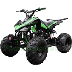 "ATV-J024 125cc Sports ATV with Automatic Transmission w/Reverse, Foot Brake, Metal Foot Rest! Remote Control! Big 19""/18"" Tires!"
