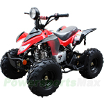 "ATV-P60 110cc ATV with Automatic Transmission, Foot Brake, Remote Control! Big 16"" Tires!"