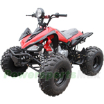 "ATV-P65 125cc ATV with Semi-Automatic Transmission w/Reverse, Foot Brake, Remote Control, 19"" Tires! New Arrival!"