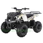 "TaoTao ATA-125D 125cc ATV with Automatic Transmission w/Reverse, Foot Brake, Remote Control! Big 16"" Tires!"