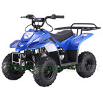 TaoTao ATA-110B1 110cc ATV with Automatic Transmission,Remote Control!Rear Rack!Free Gifts!