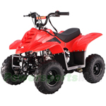 ATV-T036 110cc ATV with Automatic Transmission, Foot Brake, Remote Control!Free Gifts!