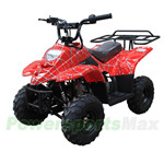 TaoTao Boulder B1 110cc ATV with Automatic Transmission, Remote Control! Rear Rack!