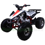 "Taotao New Cheetah 125cc ATV with Automatic Transmission w/Reverse! Big 19""/18"" Alloy Rims Wheels!"