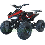 "ATV-V003 125cc Utility ATV with Automatic Transmission w/Reverse, Remote Control! Big 19""/18""Tires!"