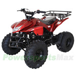 "ATV-X19 X-PRO 125cc Utility ATV with Automatic Transmission w/Reverse, Remote Control! Big 19""/18""Tires!"