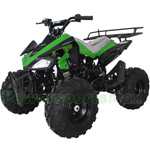 "ATV-X17 X-PRO 125cc Utility ATV with Automatic Transmission w/Reverse, Remote Control! Big 19""/18""Tires!"
