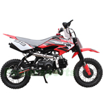 "Coolster QG-213A 110cc Dirt Bike with Fully Automatic Transmission, Electric Start! 10"" Wheels!"