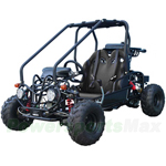 "Taotao GK110 110cc Go Kart with Fully Automatic Transmission w/Reverse, Remote Control! Hydraulic Disc! Big 16"" Wheels!"