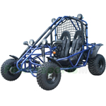 "Taotao Targa200 200cc Go Kart with Fully Automatic Transmission w/Reverse, Disc Brakes, Roof Lights! Big 21/22"" Wheels!"